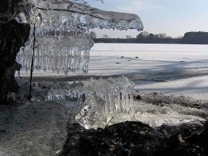Eisgestalten auf der Halbinsel Koplin am Neuendorfer See